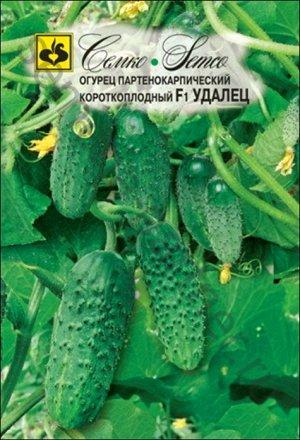 ТМ Семко Огурец партенокарпический Удалец F1/ гибриды с длиной плодов 6-12 см