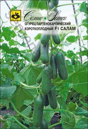 ТМ Семко Огурец партенокарпический Салам F1/ гибриды с длиной плодов 12-24 см