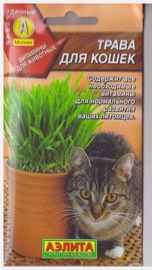 Смесь Трава для кошек (Код: 6545)