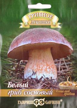 Грибы Белый гриб Сосновый (Код: 82182)
