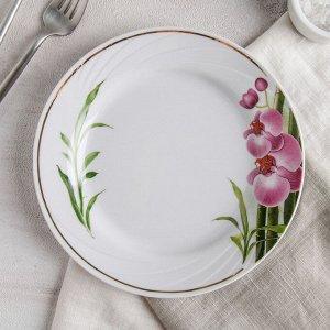 Тарелка мелкая Добрушский фарфоровый завод «Бамбуковая орхидея», d=20 см