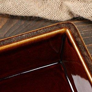 Противень для запекания, коричневый