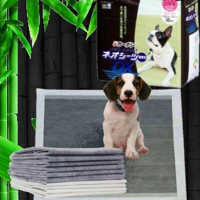 Karmy - корм для собак и кошек премиум класса! №30 — Пелёнки для домашних животных - Япония — Уход