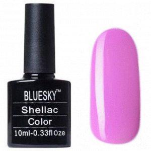 "Shellac bluesky ""A"" №058"