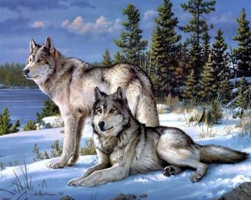 Алмазная мозаика - это удивительное творчество и релакс!  — Животные — Мозаики и фреска