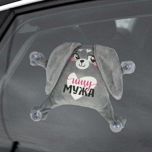 Автоигрушка на присосках «Ищу мужа», зайка