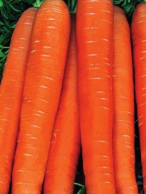Морковь Берликум Роял  2 г б/п