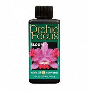 Orchid Focus Bloom