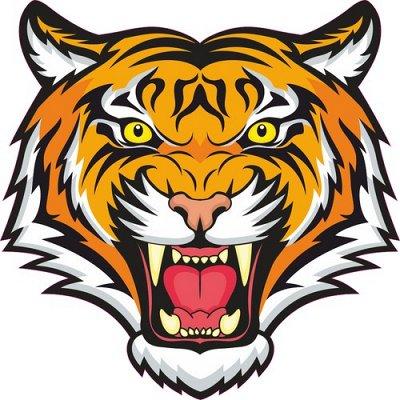 🌟Яркие интерьерные наклейки! Наклейки на Авто! - 46🌟 — Тигры и львы — Аксессуары