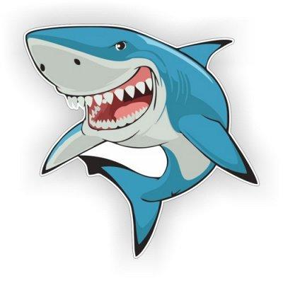 Огромный выбор классных наклеек для интерьера и авто — Акулы