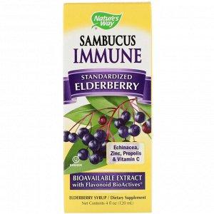 Nature&#x27 - s Way, Sambucus Immune, стандартизированная настойка с бузиной, 120 мл (4 жидких унции)
