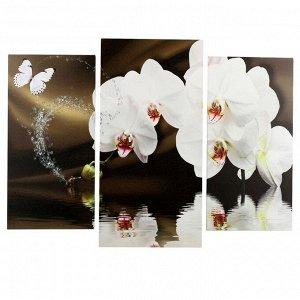 "Картина модульная на подрамнике ""Белая орхидея"" (2-25х50, 30х60 см) 80х60 см"