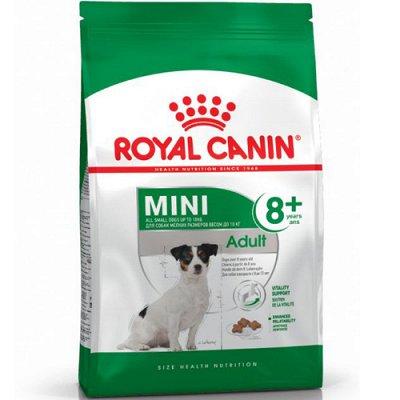 Все необходимое для любимых питомцев - очень много новинок! — Корма Royal Canin для собак — Для собак