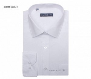 0101DF Favourite рубашка мужская