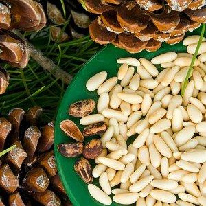Ядро кедрового ореха Дальневосточного