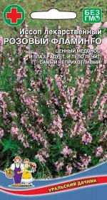 Иссоп Розовый Фламинго лекарственный (УД) Р (многолет.,кулинария,нар.медицина)