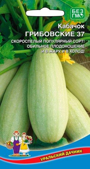 Кабачок Грибовский 37 (УД) (скороспелый,кустовой,неприхотливый,плод до 1,5кг)