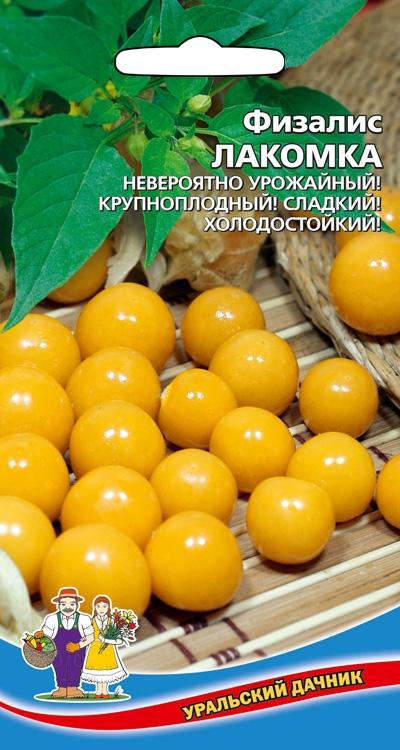 Семена 🍅Уральский дачник 🍅ваш богатый урожай! В наличии!  — Физалис — Семена ягод