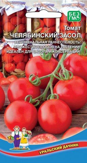 Томат Челябинский Засол (УД) Новинка!!!