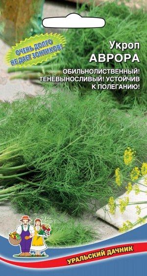 Укроп Аврора (УД) (кустовой,холодостойкий,долго не зацветает,мощный куст)
