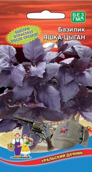 Базилик Яшка-Цыган (Марс) (среднеспелый,фиолетовый,листья крупные ароматные,пряные с ванильными нотками,до300гр)