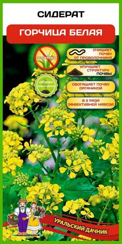 Семена 🍅 Уральский дачник 🍅 ваш богатый урожай! В наличии! — Сидераты — Удобрения и агрохимия