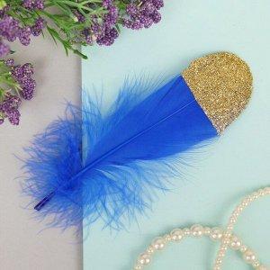 Набор перьев для декора 5 шт, размер 1 шт: 13,5 ? 2 см, цвет синий