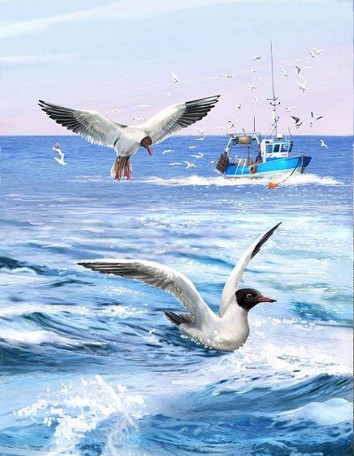 Хобби и творчество. Мегавыбор! Низкие цены! - 62 — Море, корабли - Картины по номерам Paintboy (40*50 см) — Рисование