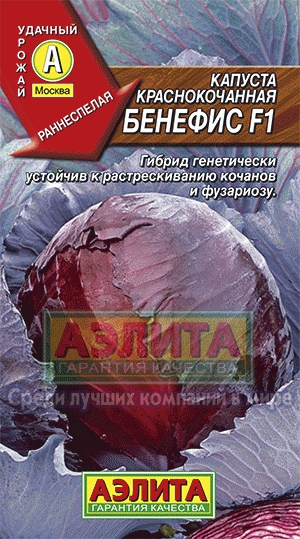 Капуста Краснокочанная Бенефис /Аэлита/цп