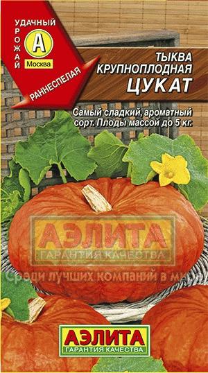 Алтайские семена — Тыква — Семена овощей