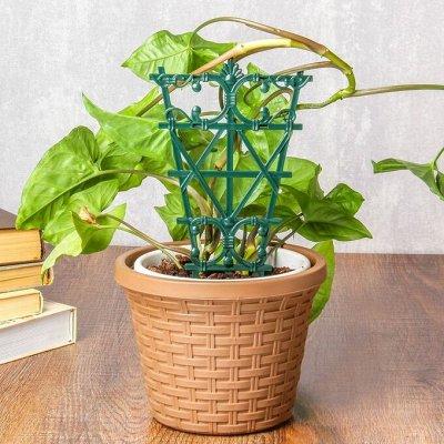 Готовимся к дачному сезону - все для сада и огорода — Шпалеры для растений