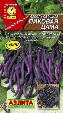 Фасоль Пиковая Дама (Код: 86143)