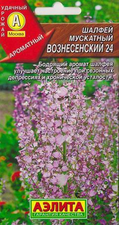 Шалфей Мускатный Вознесенский (Код: 15358)