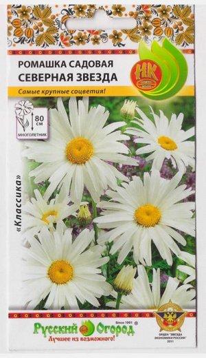 Ромашка садовая Северная звезда (Код: 1815)