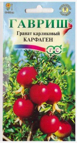 Гранат карликовый Карфаген (Код: 1990)
