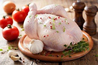 "Курица! Мясо! Индейка! По лучшим ценам! — Курица ""ПРИОСКОЛЬЕ"" — Птица"