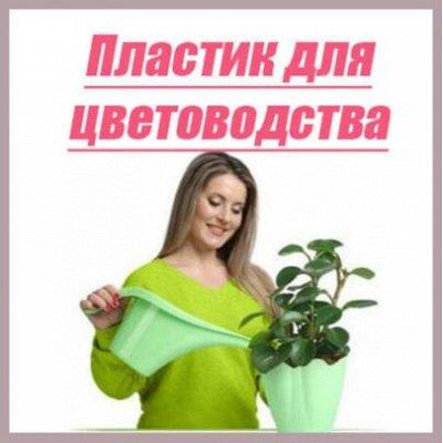 Мартика и Магнолия. Пластик для Вашего дома-94! — Товары для цветоводства и растениеводства! — Комнатные растения и уход