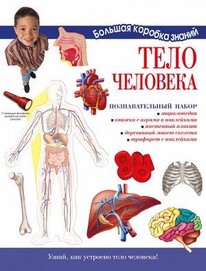Торчинская М.О. Тело человека. Познавательный набор