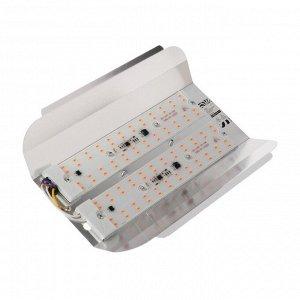 Прожектор светодиодный Luazon СДО09-100 бескорпусный, 100 Вт, ФИТО, 8000 Лм, IP65, 220 В