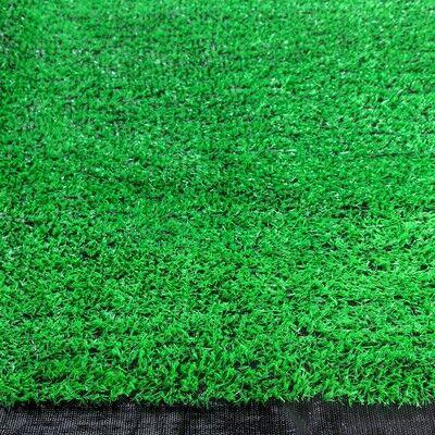 Фотоподвесы, Коллажи , Фотоальбомы, Рамки,Ключницы.   — Декоративные панели и газоны — Семена газонных трав