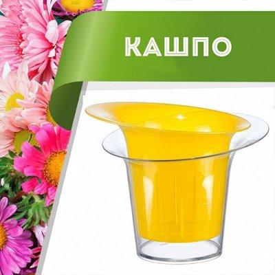 Цветоводство: для дома и дачи — Кашпо — Комнатные растения и уход