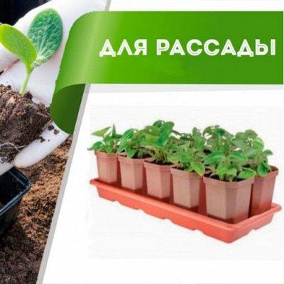Цветоводство: для дома и дачи — Все для рассады — Сад и огород