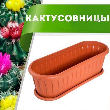 Цветоводство: для дома и дачи-40 — Кактусовницы — Комнатные растения и уход
