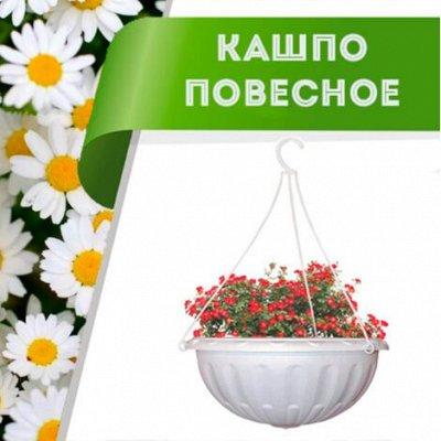 Цветоводство: для дома и дачи-40 — Кашпо подвесное — Комнатные растения и уход
