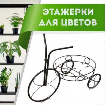 Цветоводство: для дома и дачи — Этажерки для цветов — Комнатные растения и уход