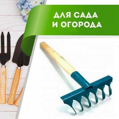 Цветоводство: для дома и дачи-40 — Товары для садово-огородных работ — Сад и огород