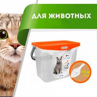 Цветоводство: для дома и дачи — Для животных — Для кошек