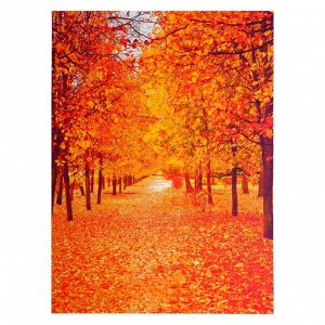 "Фотофон винил ""Аллея, парк, осень"" стена+пол 210х150 см"