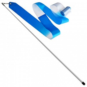 Лента гимнастическая с палочкой 56 см, 4 м, цвет белый/голубой