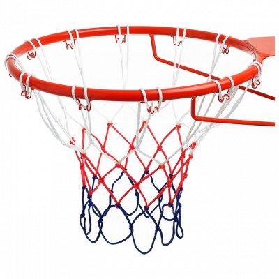 Спорт - лето - движение в массы) — Сетки — Баскетбол